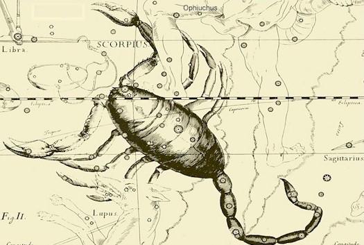 Сексуальный гороскоп для скорпиона женщины