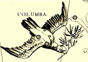 columbapic