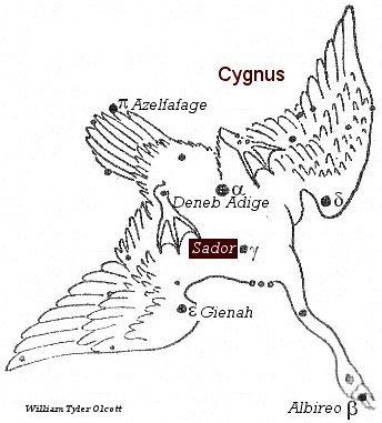 cygnus the swan astrology